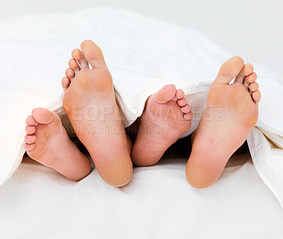 Buy stock photo Couple's feet in bed sleeping besides each other