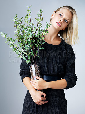 Buy stock photo Pretty young woman holding a vase with greenery in it while isolated on grey