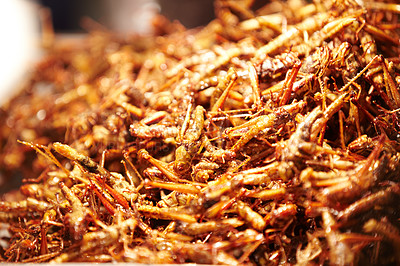 Buy stock photo Fried grasshoppers on sale at a market in Thailand