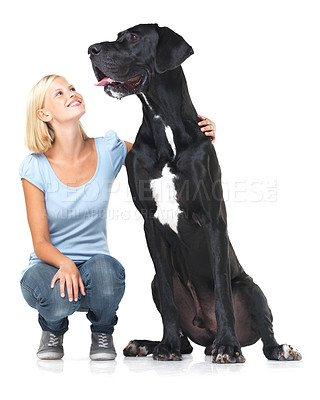 Buy stock photo Cute young woman crouching alongside her great dane and smiling - isolated on white