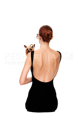 Buy stock photo Rearview of a young woman holding a yorkshire terrier - Isolated