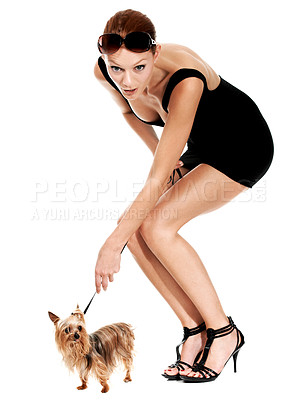 Buy stock photo A young woman bending over while she hold the leash of her yorkshire terrier