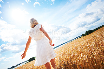 Buy stock photo Rear view of a young woman walking through a wheat field