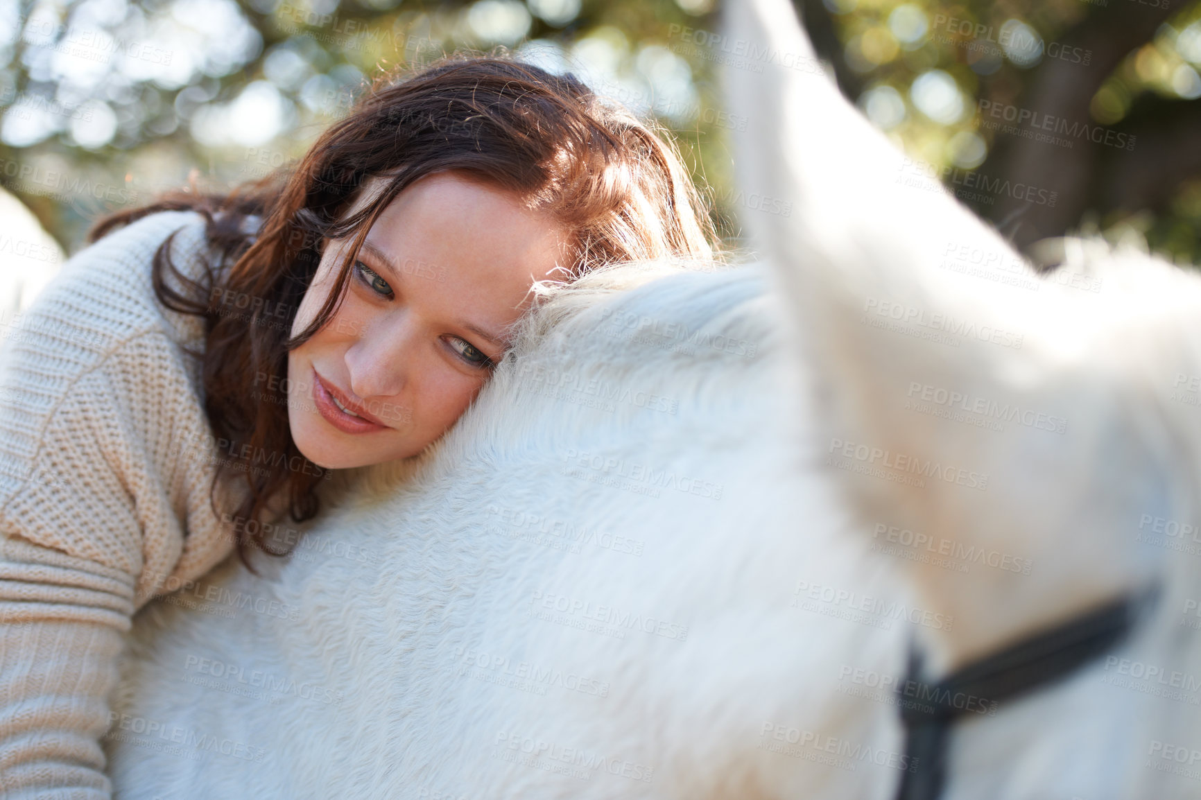 Buy stock photo An attractive woman looking at and sitting on her horse