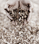 A handful of gravel