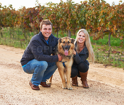 Buy stock photo Portrait of a young couple with their pet Alsatian on a wine farm
