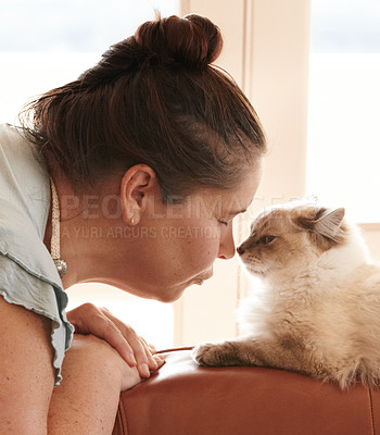 Buy stock photo A closeup shot of a affectionate female owner and her cat