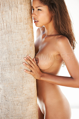Buy stock photo A beautiful young nude woman leaning against a palmtree on a white background