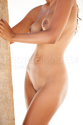 Buy stock photo Cropped image of an attractive female's naked body holding a palmtree on a white background