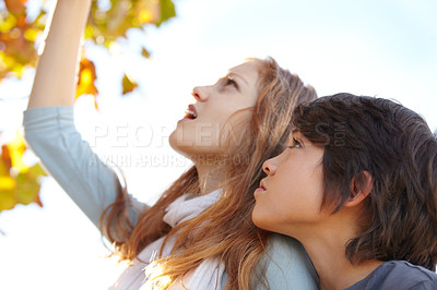 Buy stock photo A brother and sister reaching up to touch the autumn leaves