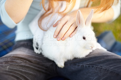 Buy stock photo Cropped view of a young girl with a white rabbit on her lap