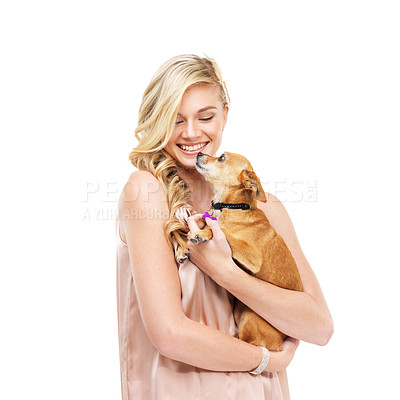 Buy stock photo A gorgeous young blonde woman holding a dog