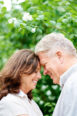 Buy stock photo Cropped shot of an affectionate senior couple standing face to face