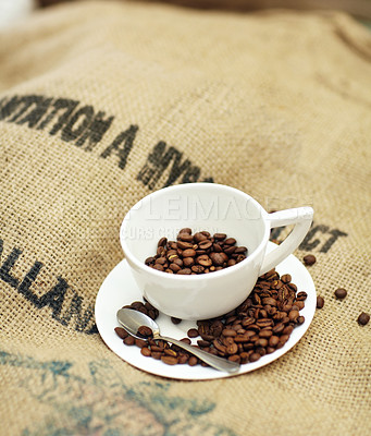 Buy stock photo Shot of a cup full of coffee beans sitting on burlap coffee bean sacks