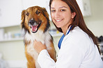 Regular check-ups are essential to canine health