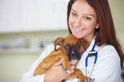 Buy stock photo Portrait of a friendly woman vet holding a puppy