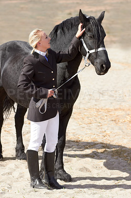 Buy stock photo High angle shot of a young female rider stroking her horse affectionately