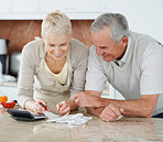Old aged couple calculating bills