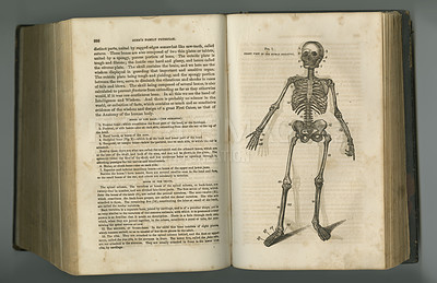Buy stock photo An aged anatomy book with its pages on display