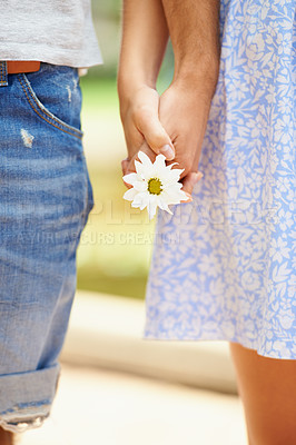 Buy stock photo Closeup of a young couple holding hands and a daisy