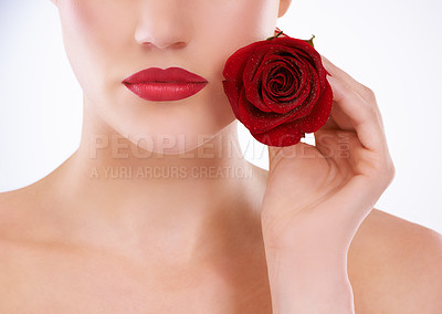 Buy stock photo Cropped studio shot of a woman holding a rose next to the lower half of her face