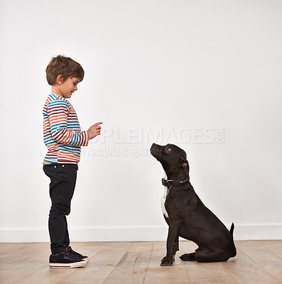 Buy stock photo A cute little boy training his dog