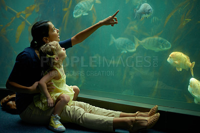 Buy stock photo Cropped shot of a little girl on an outing to the aquarium
