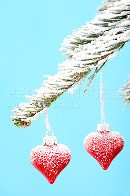 Buy stock photo Pretty christmas decorations hanging on a tree while covered in snow - isolated on blue