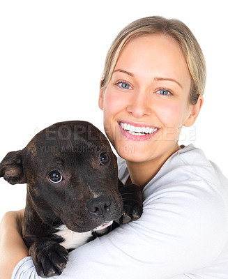 Buy stock photo Portrait of a girl embracing her adorable puppy. These two are best of friends. This is a young staffordshire bull terrier