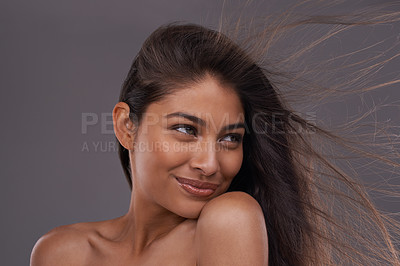 Buy stock photo A studio shot of a beautiful young woman with her hair blowing in the wind