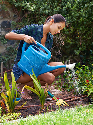 Buy stock photo Shot of an attractive young woman watering the plants in her garden