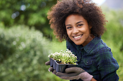 Buy stock photo Portrait of a happy young woman holding a tray of seedlings in the garden