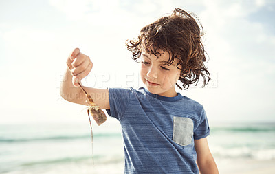 Buy stock photo Shot of a happy little boy holding up something he found on the beach