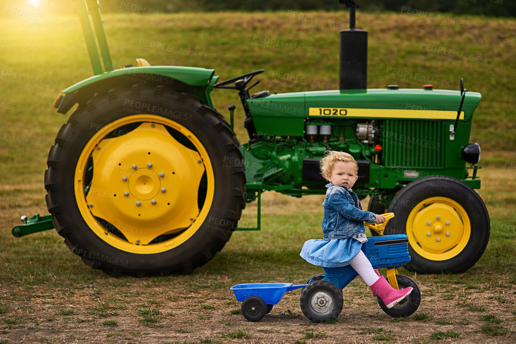 Buy stock photo Portrait of an adorable little girl riding a toy truck on a farm