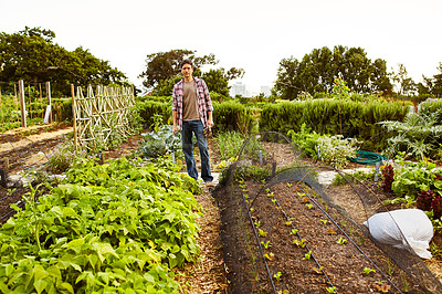 Buy stock photo Portrait of a mature man standing in his vegetable garden