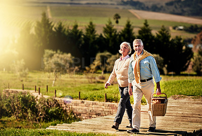 Buy stock photo Shot of a happy senior couple looking for the perfect picnic spot outside