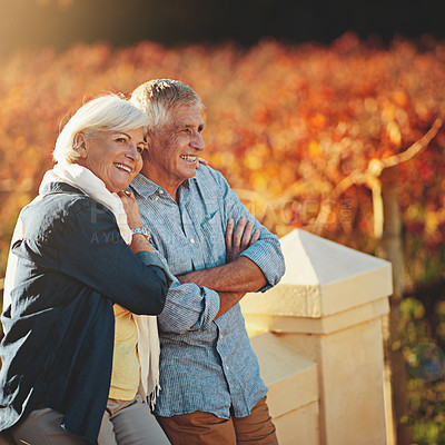 Buy stock photo Shot of a happy senior couple admiring the view while walking in a vineyard