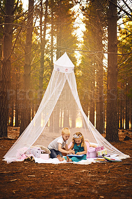 Buy stock photo Shot of a happy little boy and girl drawing in a book while sitting on a blanket outside in the woods