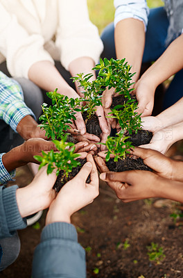 Buy stock photo High angle shot of a group of unrecognisable people holding plants growing in soil