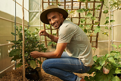 Buy stock photo Portrait of a young man working in a greenhouse