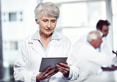Buy stock photo Shot of a focused elderly female scientist holding and using a digital tablet while standing inside of a laboratory