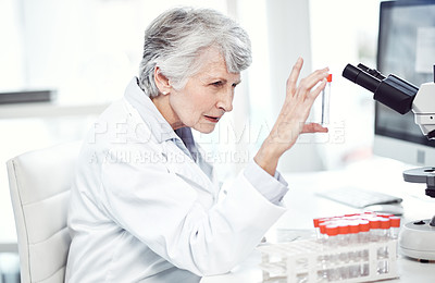 Buy stock photo Shot of a focused elderly female scientist holding up a test tube and examining it while being seated inside a laboratory
