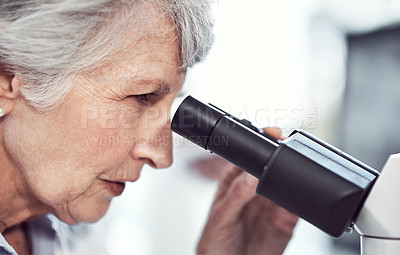 Buy stock photo Shot of a focused elderly female  scientist looking through a microscope while being seated in a laboratory