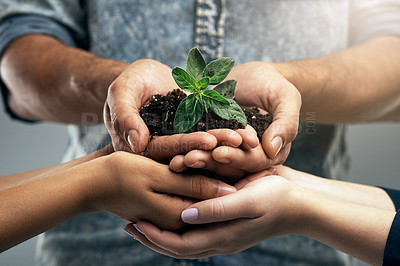 Buy stock photo Cropped shot of a group of unidentifiable people holding a plant growing out of soil