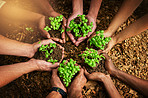 Working together for a green cause