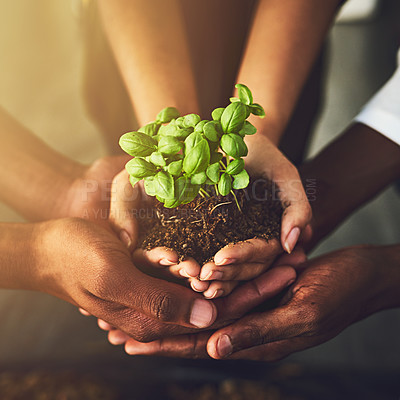 Buy stock photo Closeup shot of a group of unrecognizable people holding a plant growing out of soil