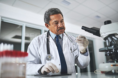 Buy stock photo Shot of a mature scientist examining liquid in a test tube in a laboratory