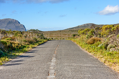 Buy stock photo The wilderness of Cape Point National Park