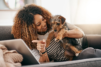 Buy stock photo Shot of a cheerful young woman playing around with her cute little puppy while being seated on a couch at home