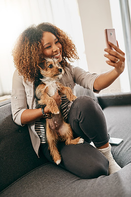 Buy stock photo Shot of a cheerful young woman taking a selfie with her cute little puppy while being seated on a couch at home